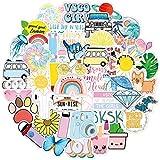 100pcs VSCO Stickers for Hydro Flask,Water Bottles,MacBook,Laptop,Phone,Suitcase,Fridges