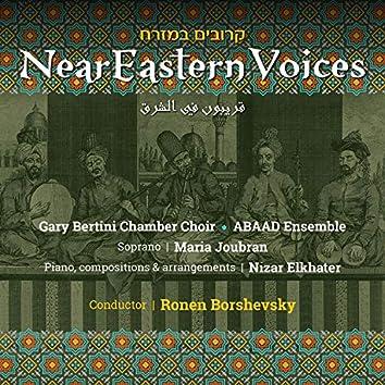 NearEastern Voices