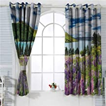 hengshu Nature Eclipse Blackout Curtains Floral Mountain Meadow Valley by Lake with Blossom Petals Inspiration Picture Patio Door Curtains Living Room Decor W72 x L84 Inch Purple Fern Green