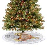 Moderna falda de árbol con diseño de ojo humano, córnea, iris, pupilas ópticas, nervios ópticos, ado...