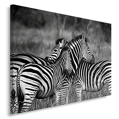 Feeby. Cuadro en lienzo - 1 Parte - 60x80 cm, Imagen impresión Pintura decoración Cuadros de una pieza, NATURALEZA, CEBRAS, BLANCO Y NEGRO
