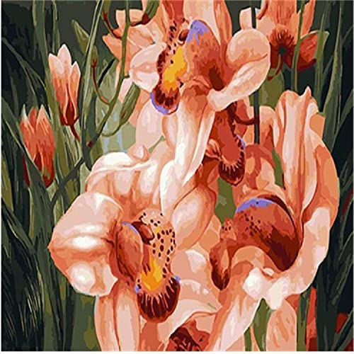 NDSLJSLYH Bricolage Peinture Numérique Décor à La Maison Fleur Rose, 80X100Cm Cadeau De Peinture à l'huile De étudiant Débutant pour Enfants Adultes Peindre Kits Home Decor