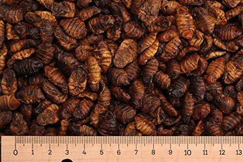 Futtertiere getrocknet (Grundpreis 7,50 Euro/kg) - 5,0 kg Premium Seidenraupen - Koifutter