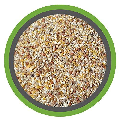 (EUR 0,87/ kg) KÜKEN-VITAL 30 kg - Premium Kükenmischung mit Hirse und Leinsamen - 100% Natürliches Alleinfuttermittel
