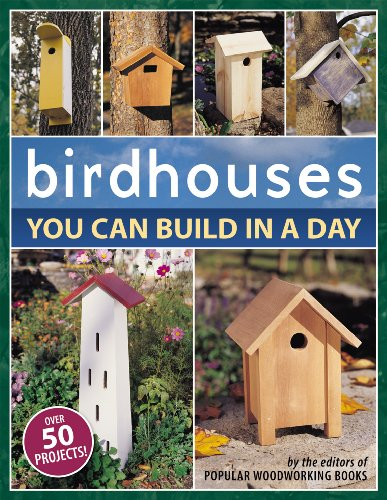 Birdhouses You Can Build in a Day (Popular Woodworking) by [Popular Woodworking]