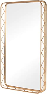 "FENORI 20""x31.5"" Bathroom Wall Mirror - Contemporary Metal Rectangle Mirror for Living Room, Bathroom, Bedroom, and Entryway, Gold"
