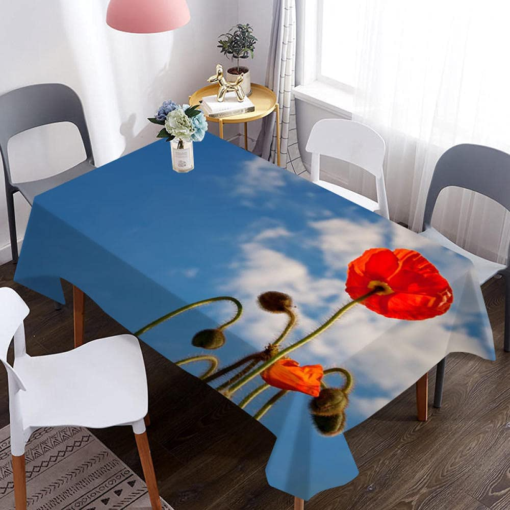 CKKHYCD 3D Waterproof Large discharge sale Max 70% OFF Tablecloth Blue Cloud Sky Flower red White