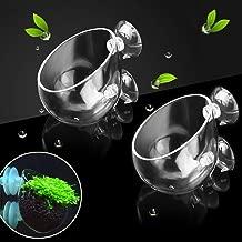 capetsma 2X Crystal Glass Aquatic Plant Pot, Aquarium Aquatic Planter, Red Shrimp Live Plants Fish Tank Glass Holder with 4X Suction Cups for Aquarium Aquascape Decoration