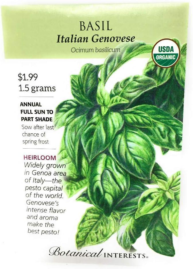 BOTANICAL INTERESTS Organic Basil EA Bargain Italian 1 Genoveseseed Ranking TOP4