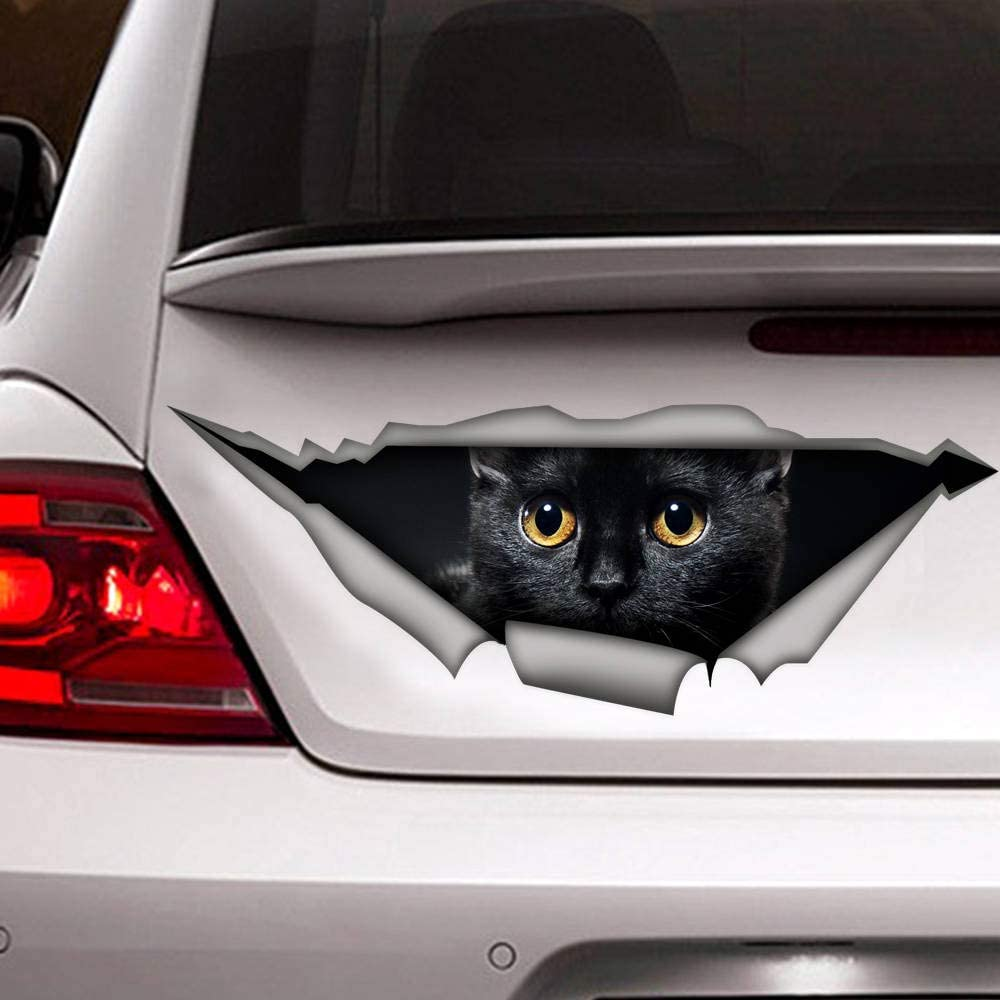 Amazon Com Mcc538arthy Decal Stickers For Cars Funny Window Decals Black Cat Decal Funny Sticker Cat Car Sticker Black Cat Sticker Self Adhesive Window Sticker For Van Truck Vehicle Sports Outdoors [ 1000 x 1000 Pixel ]