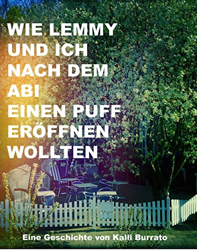 Wie Lemmy und ich nach dem Abi einen Puff eröffnen wollten (German Edition)