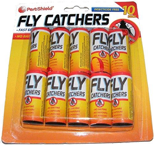 Lot DE 10 Insectes Catcher Killer Bande Bande Pest Bug Wasp fenêtre Fly Poison Gratuit