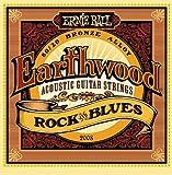 Ernie Ball Earthwood 2008 Rock and Blues Acoustic Guitar Strings