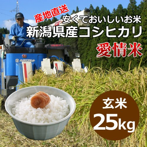 【自宅用】[玄米]安くておいしいお米 新潟県産コシヒカリ 愛情米[25キロ]