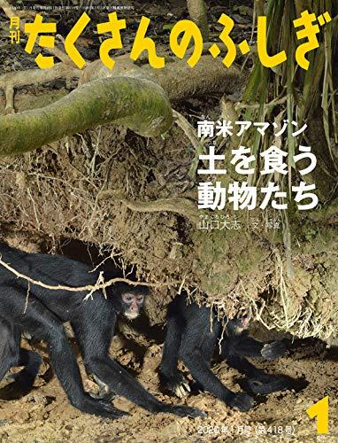 南米アマゾン 土を食う動物たち (月刊たくさんのふしぎ2020年1月号)