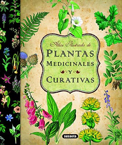 Plantas Medicinales Y Curativas (Atlas Ilustrado