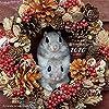 coto coto felt works  フェルトの森の仲間たち カレンダー2020 ([カレンダー])