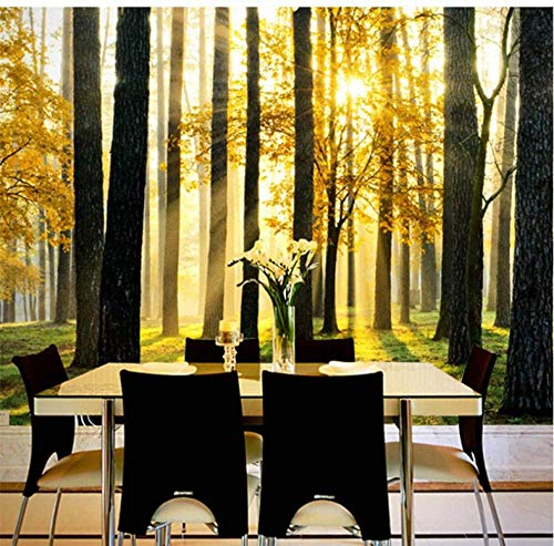 ZJfong 3D wallpaper bos zonlicht landschap fotobehang woonkamer slaapkamer eetkamer binnendecoratie behang Papel De Parede 3D 220 x 140 cm.