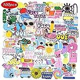 100 Pink VSCO Stickers, Aesthetic Stickers, Cute Stickers, Laptop Stickers, Vinyl Stickers, Stickers for Water Bottles, Waterproof Stickers for Kids Teen Girls, Sticker Packs