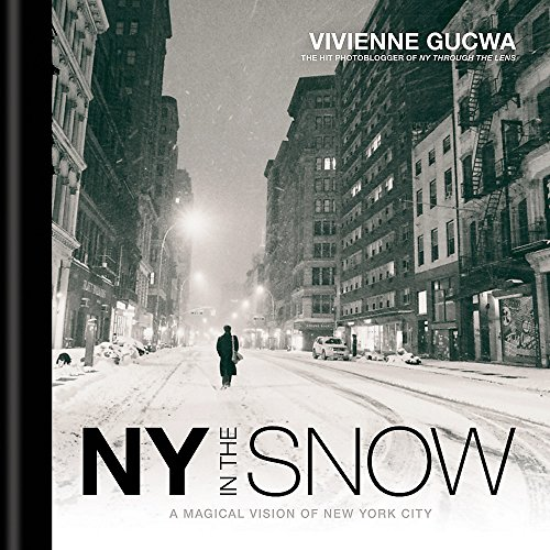 NY in the Snow: A Magical Vision of New York City