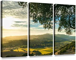 Sunset at Sonoma California Patchwork Vineyard at harvestPrint On Canvas Wall Artwork Modern Photography Home Decor Unique Pattern Stretched and Framed 3 Piece