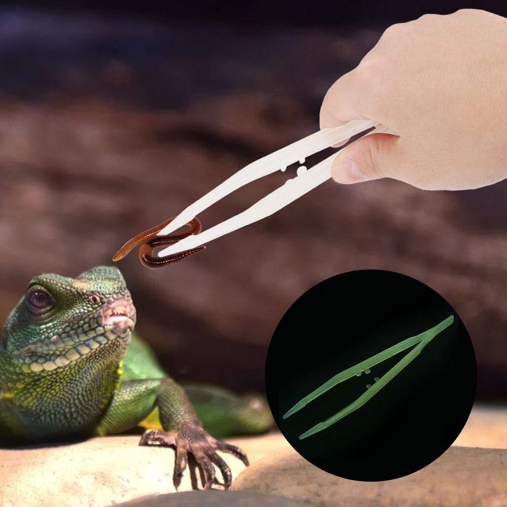 Pinzas de alimentación para Reptiles Reptiles Luminosos Rectos Anfibios Alimentador Pinzas Herramienta de alimentación para Lagarto Gecko Snake Spider: Amazon.es: Productos para mascotas