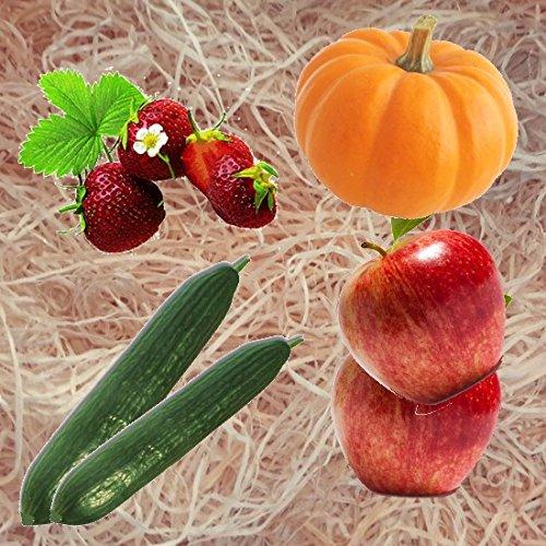 10kg Gartenholzwolle Gemüseholwolle Erdbeerholzwolle * Bio Qualität * PEFC Zertifiziert * sehr hell * aus Deutschem Wald - von unipak