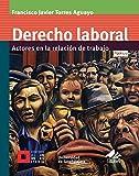 Derecho laboral: Actores en la relación de trabajo (Licenciatura)