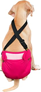 Best french bulldog diaper suspenders Reviews