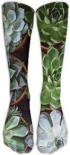 ulxjll, Media Vestido Colorido Plantas Verdes Suculentas Sobre El Tubo De La Pantorrilla Niñas Rodilla Transpirable Niños Calcetines Largos Viaje Medias Divertidas Personalizadas 50Cm