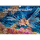 Paquete doble de calendario bajo el agua Magic DIN A3 para submarino 2022 – Soul Magic
