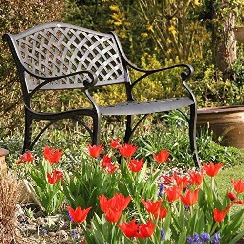 Lazy Susan Jasmine Metal Garden Bench, 2-seater in Antique Bronze, Weatherproof Aluminium Garden Bench   Garden   Cast aluminium   Rust Proof   Easy Assembly   For All Weather Conditions, 102x55x85, 12 Month Warranty