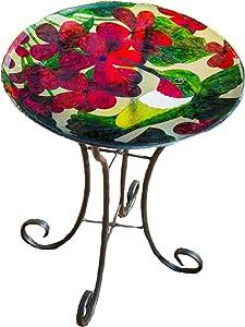 Goose Creek Bird Bath Bowl Garden Décor Glass Plate Birdbath with Metal Stand,Hummingbird