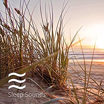 Sleeping Smooth Noises and Calming Relax Therapy Soothing Noise Summer Collection