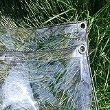 LXF Transparente Hochleistungsplane, wasserdichte, klare Plane mit Ösen, Bodenabdeckungen Schuppenstoff regenfest 350G / M² (größe : 2Mx4M)