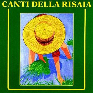 Canti Della Risaia