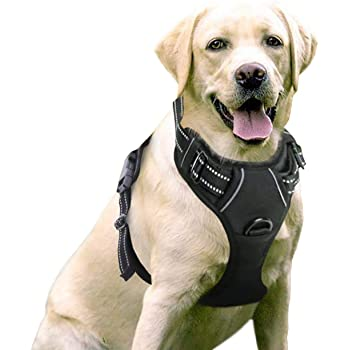 """rabbitgoo Dog Harness, No-Pull Pet Harness with 2 Leash Clips, Adjustable Soft Padded Dog Vest, Reflective No-Choke Pet Oxford Vest with Easy Control Handle for Large Dogs, Black, L, Chest 20.5-36"""""""
