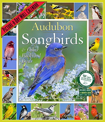 Audubon Songbirds & Other Backyard Birds Picture-a-Day 2016 Calendar