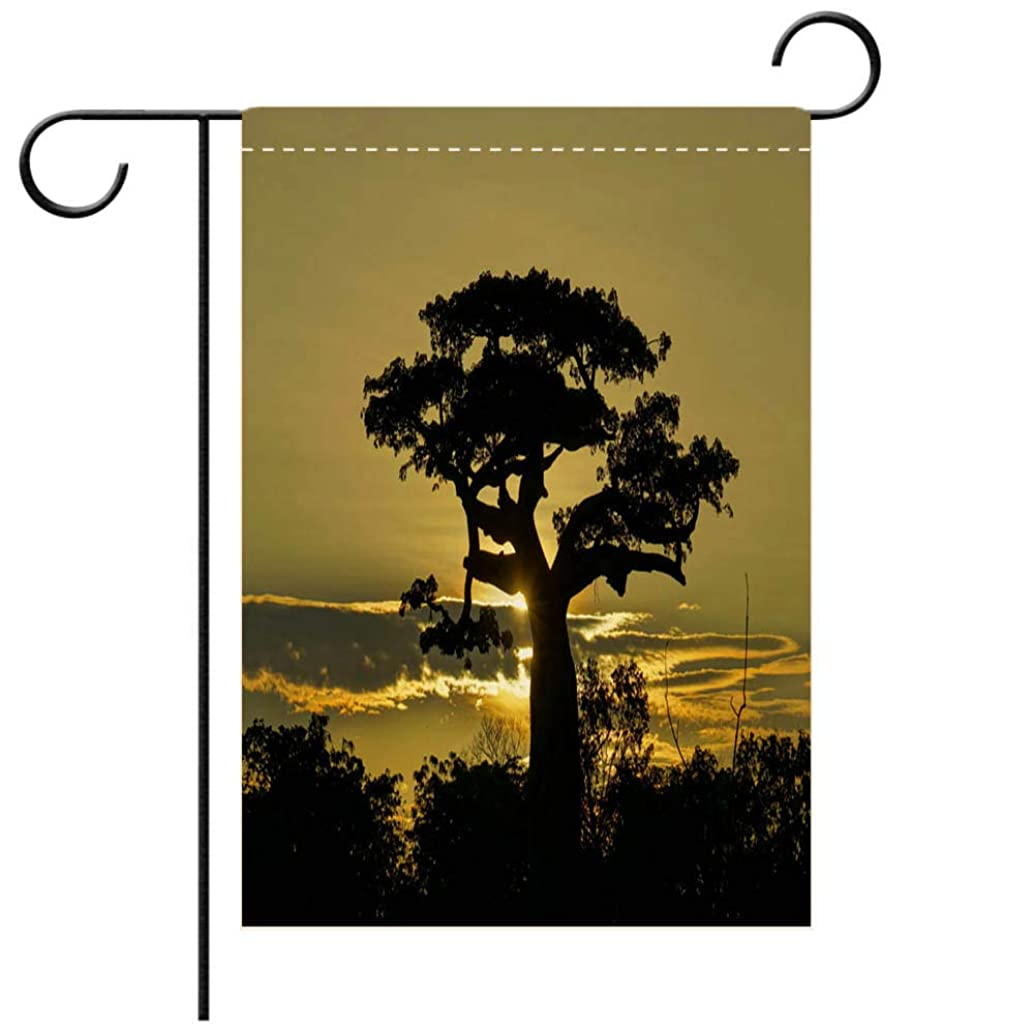 BEICICI Garden Flag Double-Sided Printing,Beautiful Baobab Trees on The African Island of Madagascar Best for Party Yard and Home Outdoor Decor