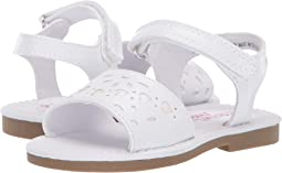 Women's Shoes Bright Crocs Women's 9