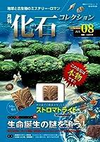 月刊化石コレクション no.08―地球と古生物のミステリー・ロマン (朝日ビジュアルシリーズ)