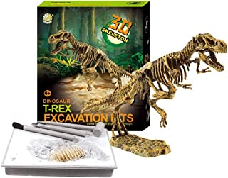 Liberty Imports Dinosaur Skeleton 3D Dino Fossil Bones Excavation Science Kit