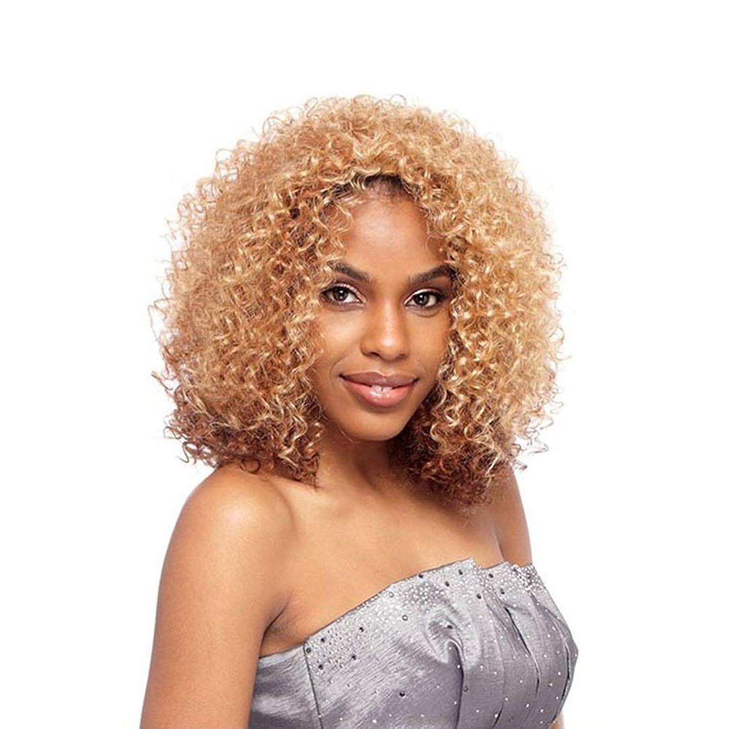 美的ホテル感染するZXF かつらヨーロッパとアメリカの短い巻き毛の金のかつら女性の爆発ヘッドアフリカ黒高温シルク化学繊維フード 美しい