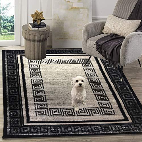 Siela Teppich Wohnzimmer Schwarz,Kurzflor Teppich, Teppiche Für Schlafzimmer, Küche Läufer Flur, Modern Deko Esszimmer, Hochwertig (80 x 300 cm)