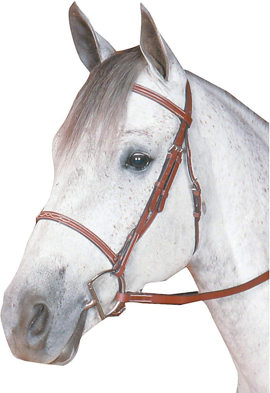 Kincade Raised service Fancy Stitched Pony Long-awaited Bridle