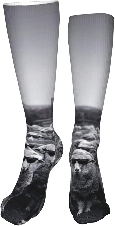 Glasses Sheep Women Premium High Socks, Stocking High Leg Warmer Sockings Crew Sock For Daily And Work