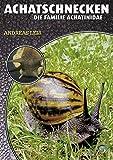 Achatschnecken: Die Familie Achatinidae (Art für Art)