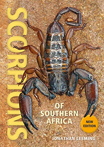 Scorpions of Southern Africa (English Edition)