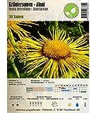 Kräutersamen - Alant/Inula helenium - Asteraceae 30 Samen