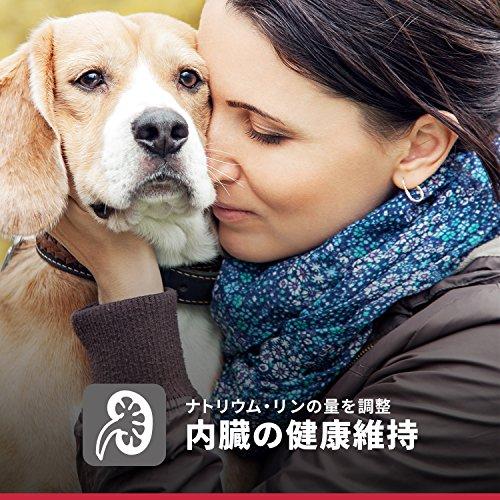 ヒルズサイエンス・ダイエットドッグフードシニア7歳以上高齢犬用チキン大型犬種用12kg